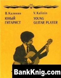 Книга Юный гитарист