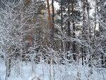Зима хрустальная