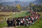 Беженцы на границе между Хорватией и Словенией