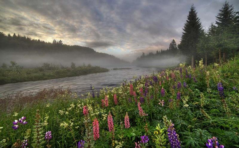 Красивые фотографии природы Норвегии разных авторов 0 ff0ff 5083fa6d orig
