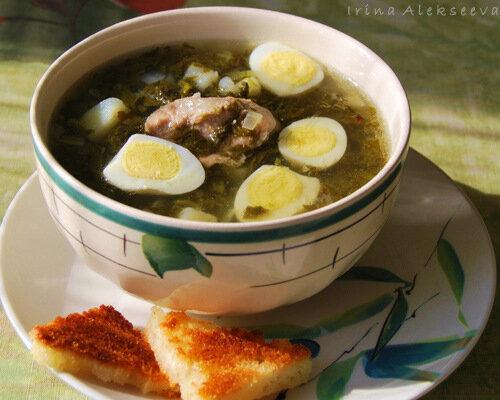 Готовим супы в жаркую погоду! Щи со щавелем