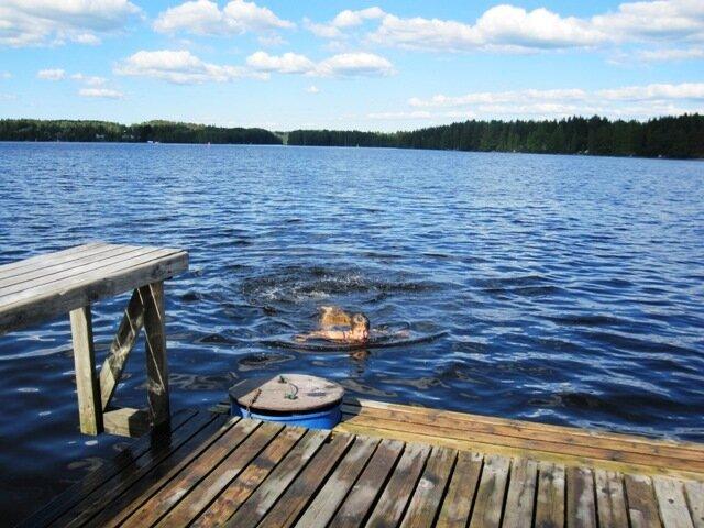 Купание после стирки ковров в озере