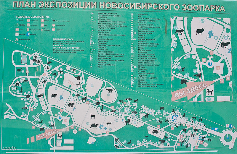 Новосибирский зоопарк схема территории