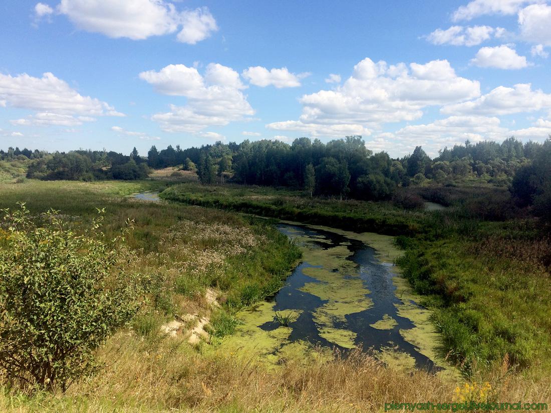 Река Черница