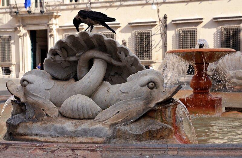 Рыбы и птица