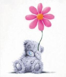Мишки Тедди...