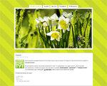 Дизайн для ЖЖ: Весенний салат. Дизайны для livejournal. Дизайны для Живого журнала. Оформление ЖЖ. Бесплатные стили. Авторские дизайны для ЖЖ