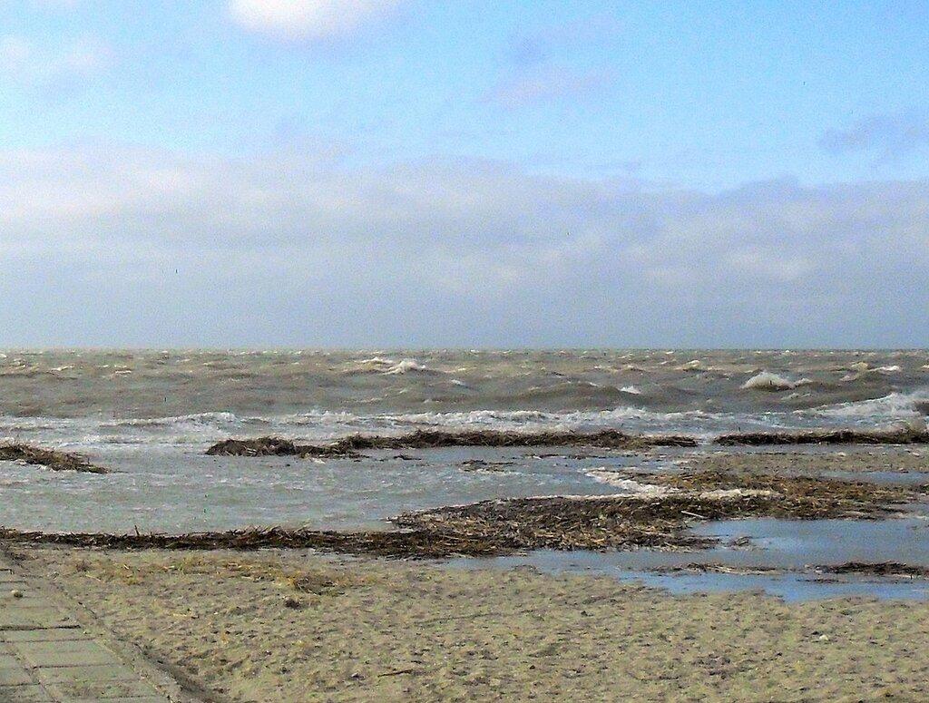 Берег, ветер .... SAM_5724 - 1.JPG