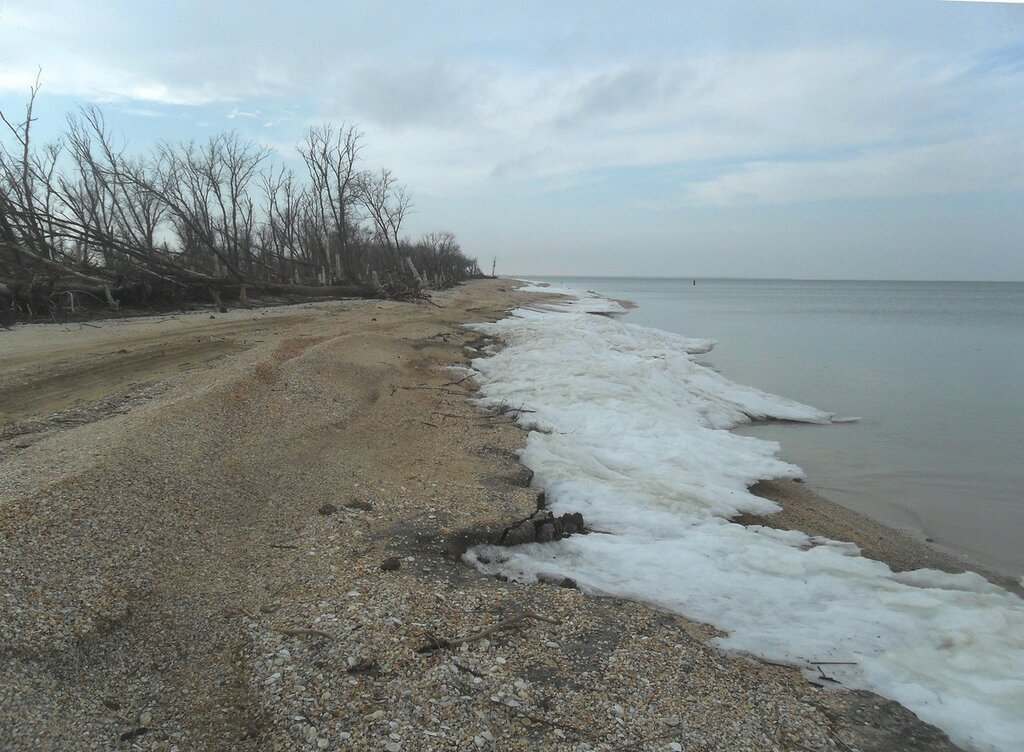 Пейзаж зимнего берега ... SAM_5616.JPG