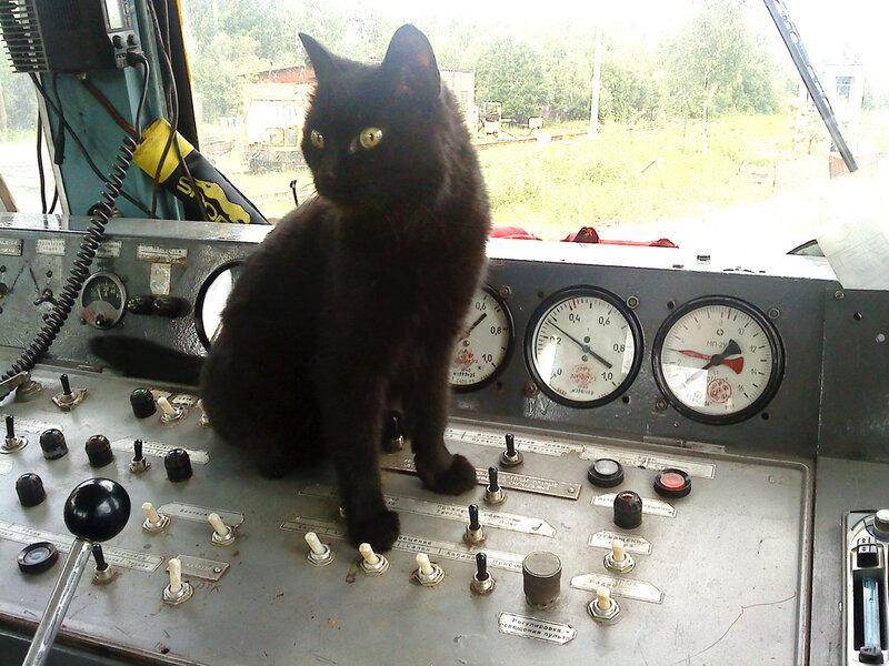 Аза, железнодорожница:)