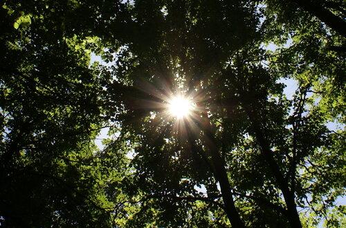 Радужное Солнце.