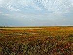 Керчеснкий полуостров, Крым