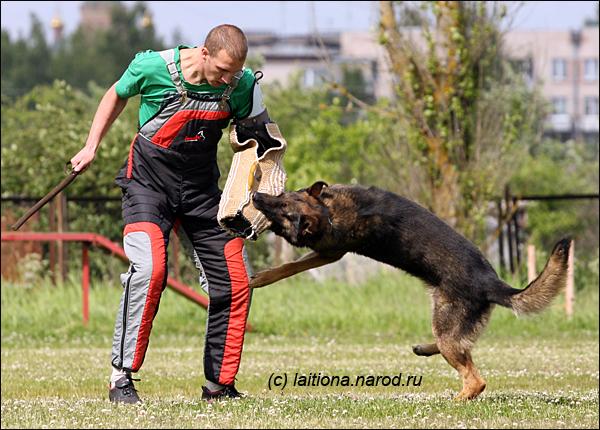 http://img-fotki.yandex.ru/get/4205/laitiona.62/0_33f1d_7296f288_orig.jpg