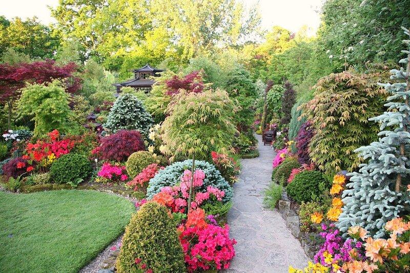 Garden английский сад для всех сезонов