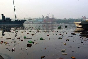 Амурский залив во Владивостоке можно очистить за пять лет с помощью ЭМ-колобков