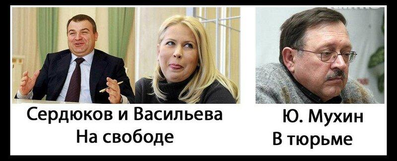 Сердюков и Васильева на свободе, а Ю. Мухин в тюрьме