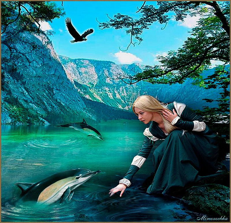 Дельфин мой друг.jpg