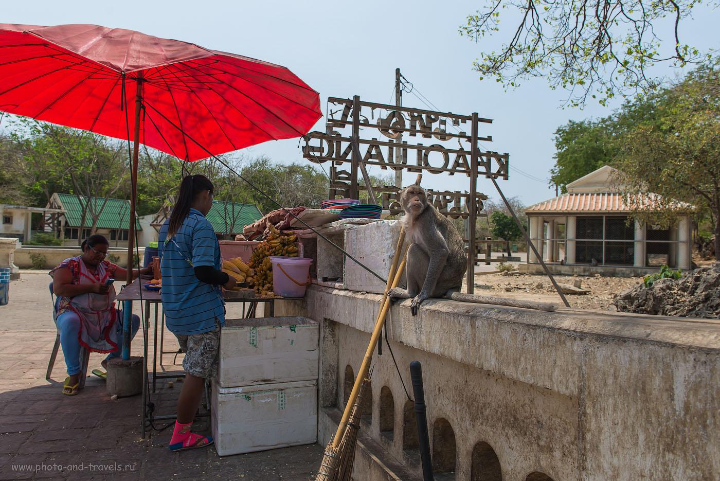 Фотография 12. Обычная сценка из тайской жизни. Экскурсия в пещеру Луанг, что недалеко от города Хуахин (125, 24, 6.3, 1/250). Отзывы об отдыхе в Таиланде