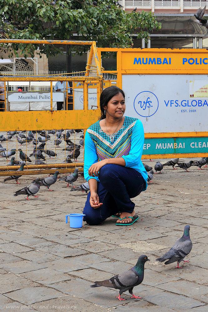 Фотография №16. Красавица и голуби. Отчет о поездке в Мумбаи осенью. Путешествие по Индии самостоятельно (24-70,1/125, 0eV, f9, 70 mm, ISO 100)