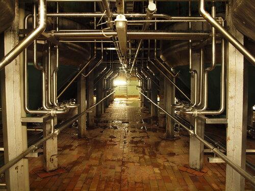 темные подвалы для закваски