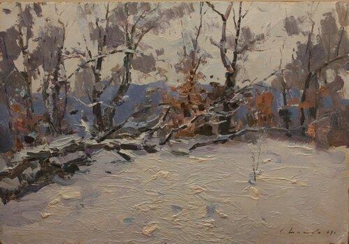 Зима в Голосееве