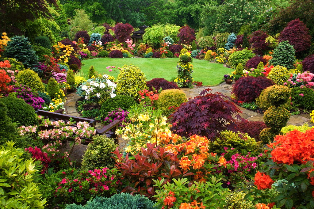 английский сад своими руками фото