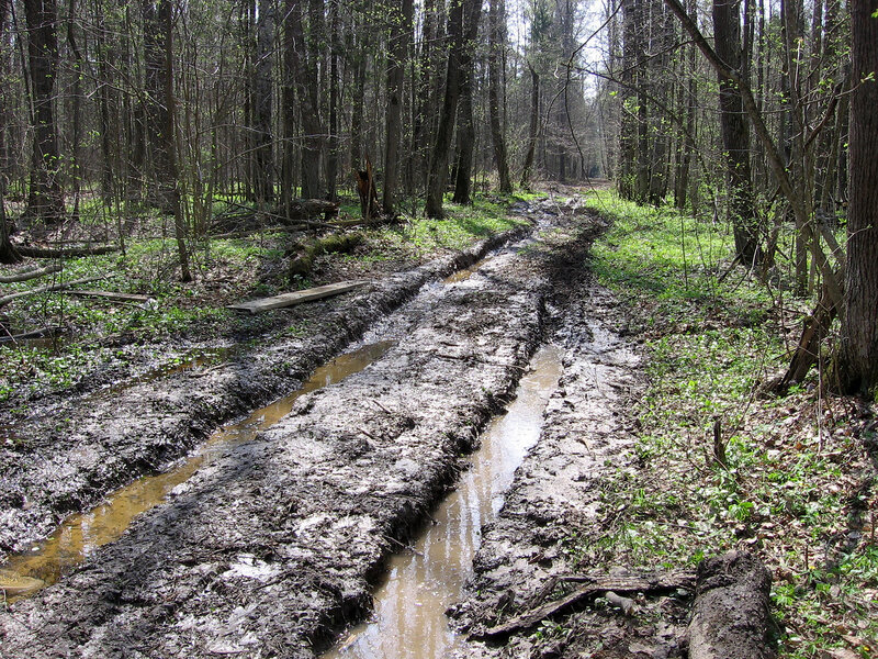 грязная дорога
