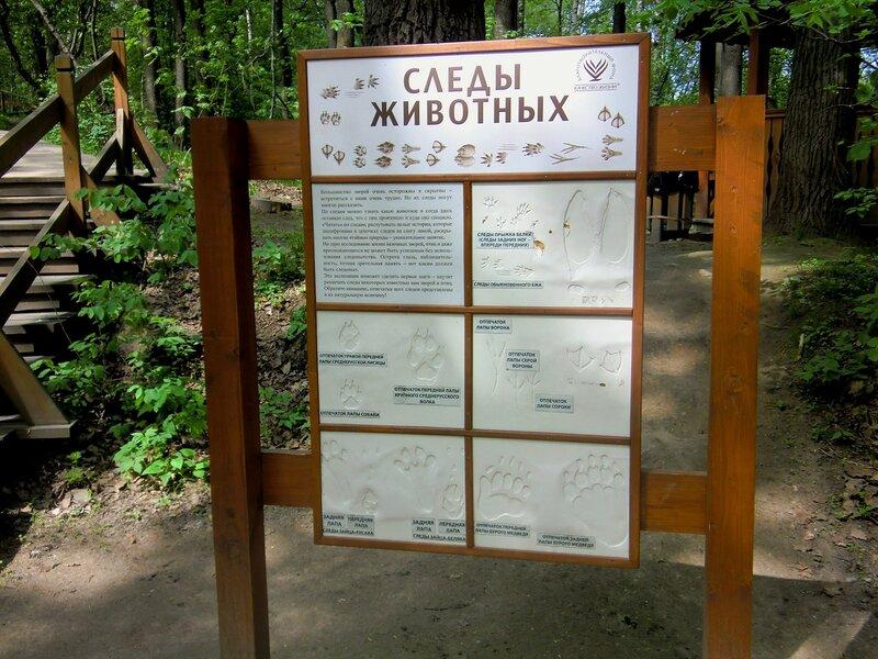 Природный заказник 'Воробьевы горы' в День Победы'