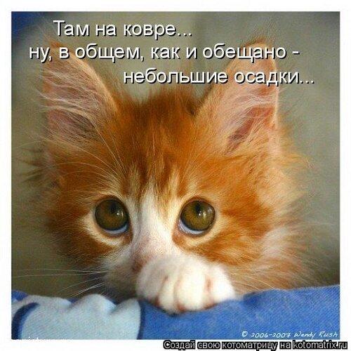 http://img-fotki.yandex.ru/get/4207/lesy888lesy.95/0_48a3f_931b4578_L.jpg