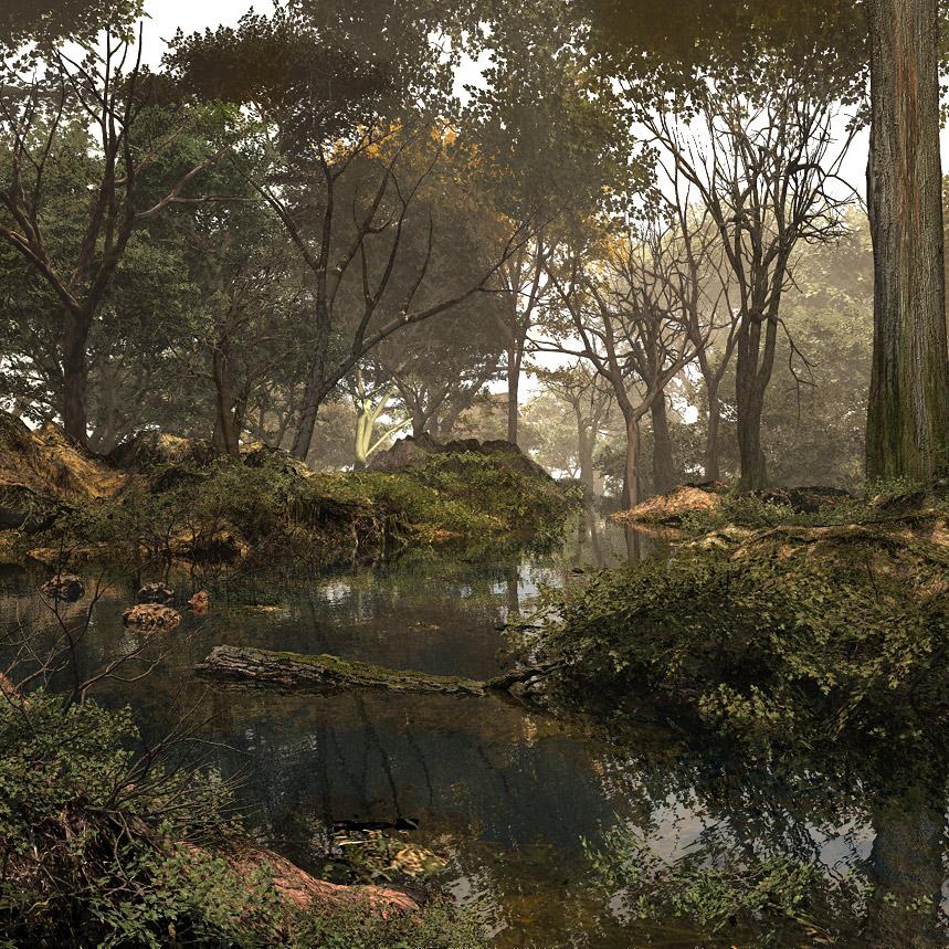 Dank and misty woodland