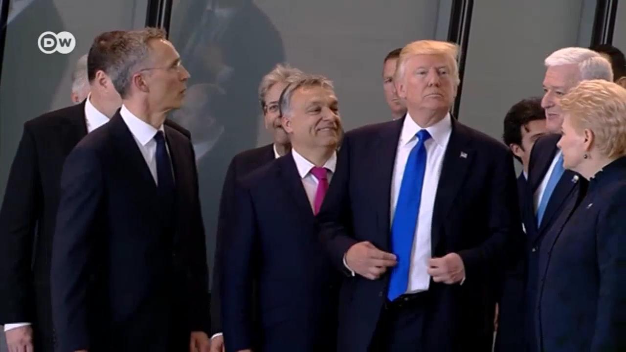Червь (длинная стихотворная фантазия про Трампа на злобу дня)