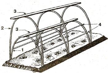 тоннель для выращивания огурцов