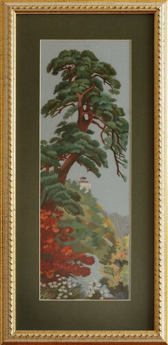 Крымская ель