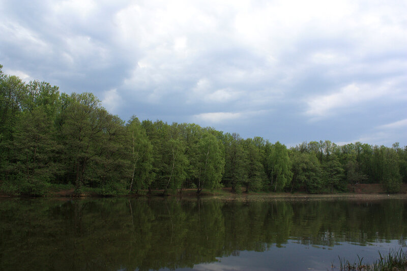 Панорама дальнего пруда
