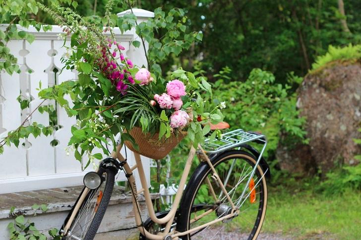 Спорт и жизнь: где парковать велосипед в маленькой квартире (9 фото)