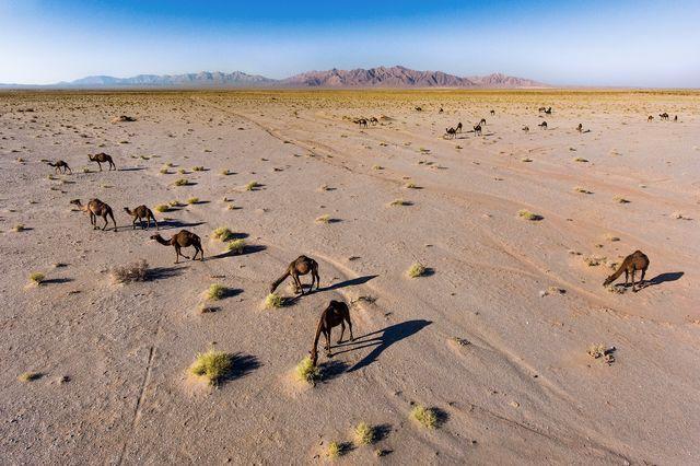 Лучшие фотографии, опубликованные журналом National Geographic