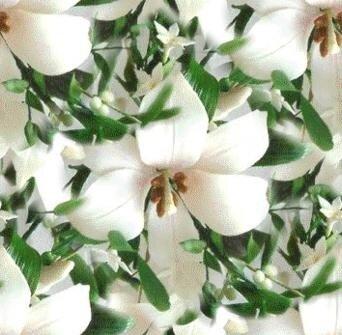 бесшовные фоны цветочные