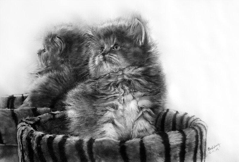 Paul Lung, рисунок карандашом