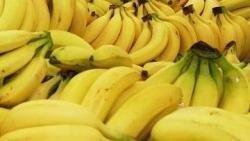 Самые полезные продукты в жизни человека