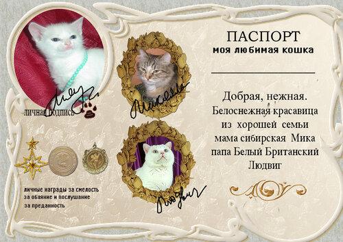 http://img-fotki.yandex.ru/get/4210/silaya.30/0_39515_f05a69c1_L