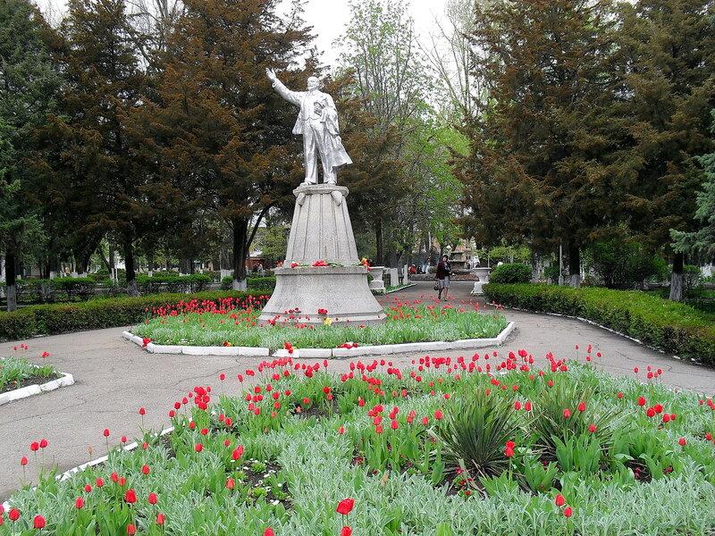 Апрельский тюльпановый рай в Ахтарях. (22)