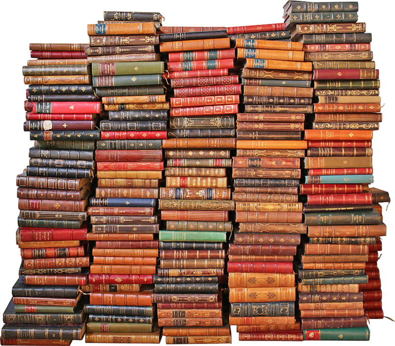 dkerkhof - libby the librarian - large stack of books.png