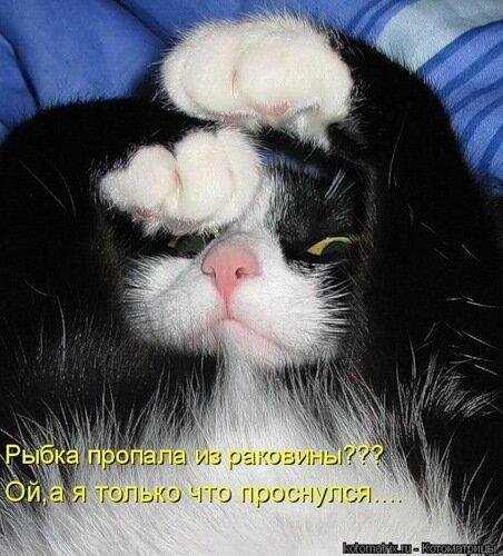 http://img-fotki.yandex.ru/get/4211/c-olia2009.b/0_2c3b2_481a6aba_L.jpg