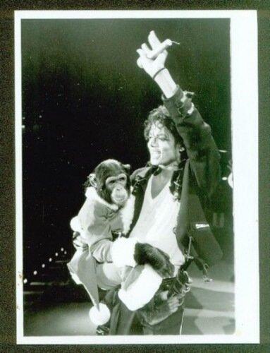 Майкл со своим любимчиком!