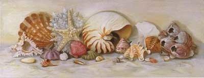 Seashells002-b.jpg