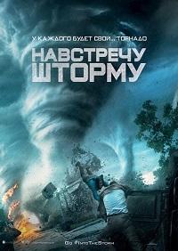 Навстречу шторму / Into the Storm (2014/BDRip/HDRip)