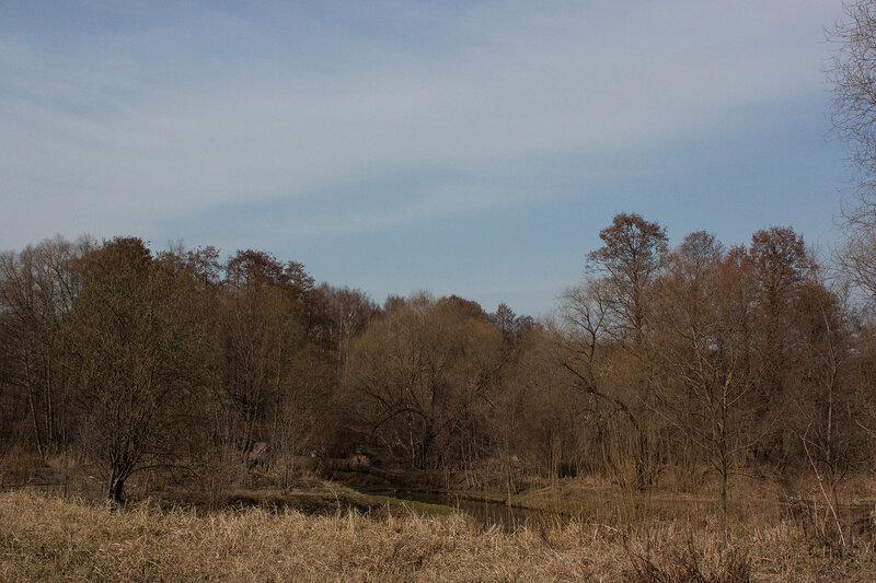 Вид в парк