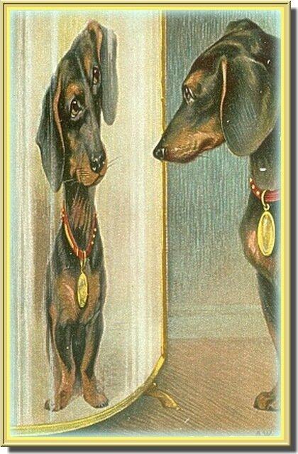 ТАКСА...                             Старинная европейская открытка.