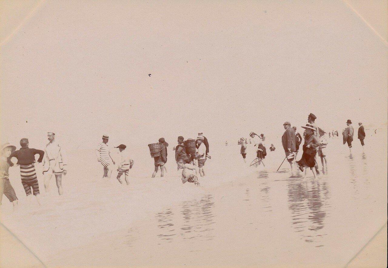 Берк. Ловля креветок. 1895