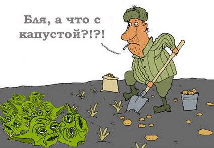 http://img-fotki.yandex.ru/get/4213/yes06.10d/0_283a5_fe217b87_XL.jpg